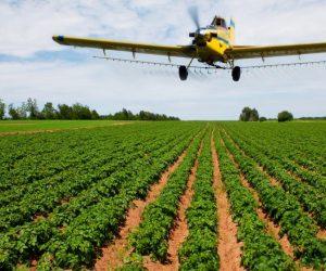 patato-cropduster